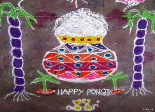 இனிய பொங்கல் வாழ்த்துகள் / Happy Pongal