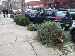 Parallel parking for Christmas trees only.