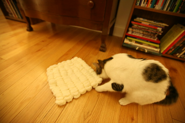 Marshmallow cat cushion