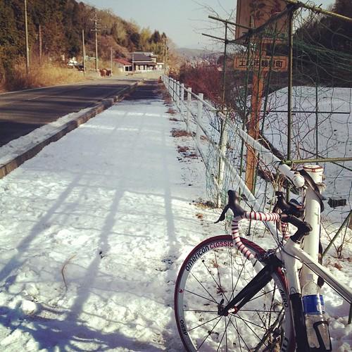 霜だけかと思ったら雪も残ってた。
