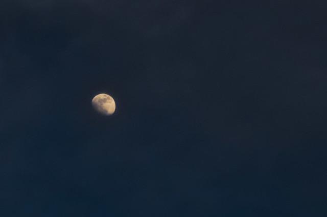 365 - 22 Moon!