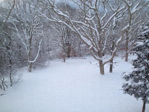 some snow!.JPG