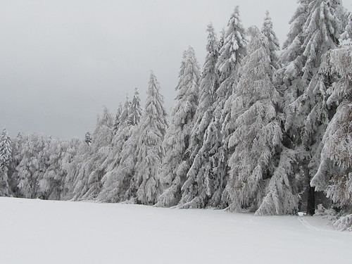 une journee a la neige aux donon 014