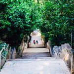 A walk up Marjan Hill