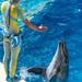 150216 Enoshima Aquarium-29.jpg