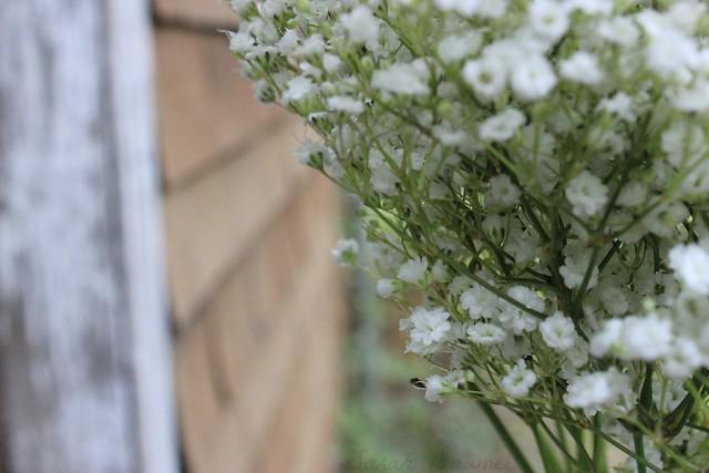 Restful flowers1