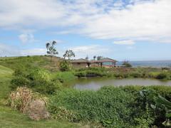Kauai Lagoon Golf Club 339