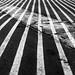 Lines affair ©Éole