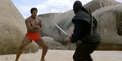 american-ninja-2