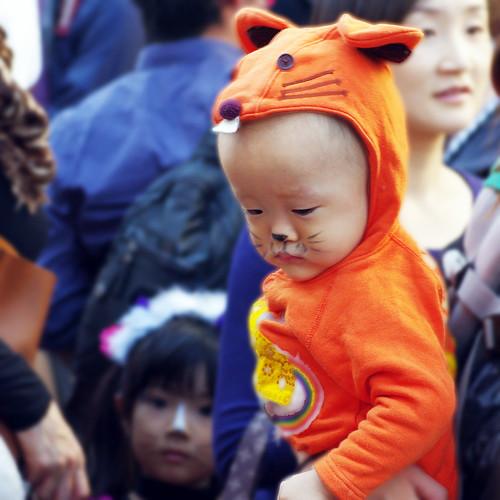 Kagurazaka Cat Halloween 2012-11