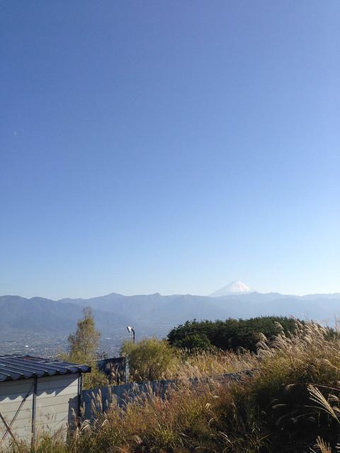 2012-10-21 14.17.31.jpg