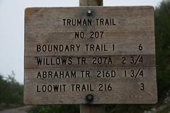 Windy Ridge to Loowit Falls Hike
