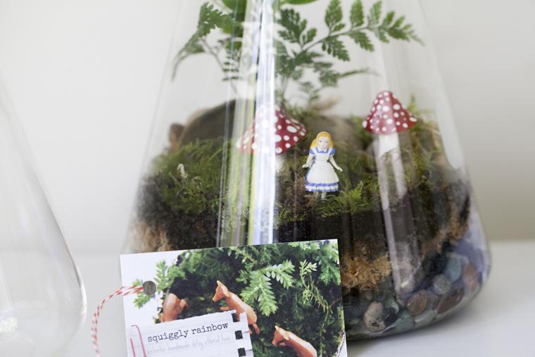 squigglyrainbow terrarium