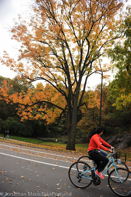 Central Park in Fall-9