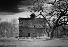 Yet even more black and white landscapes