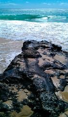 rocky_coast3