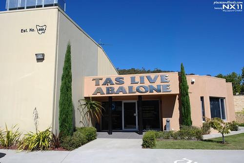 tas live front