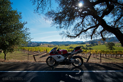 Weekend solo run - Wine Country by Speedy Chung
