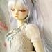 Winter Maiden by animemadness