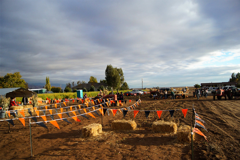 2012pumpkinpatch7