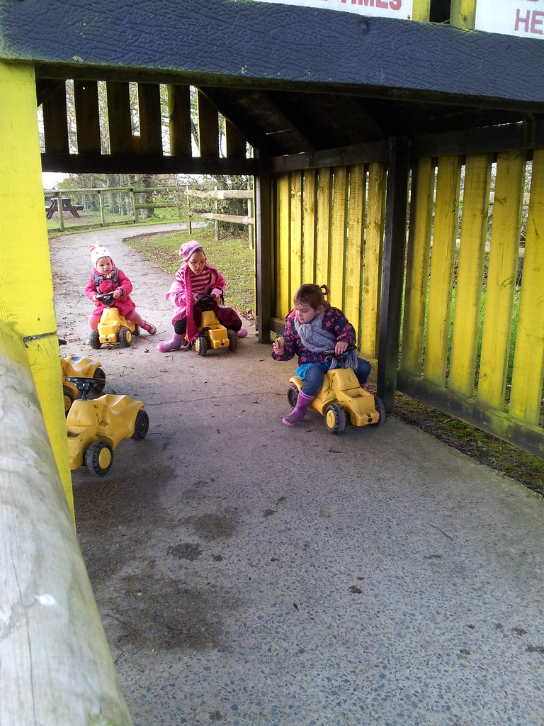 , Evans-Crittens at Folly Farm #NaBloPoMo Day 6