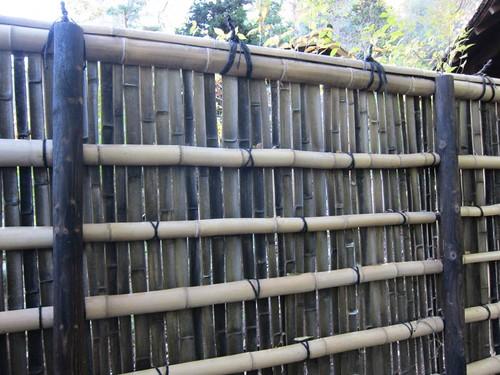Hakone Japanese Gardens, Saratoga, CA, bamboo IMG_2339