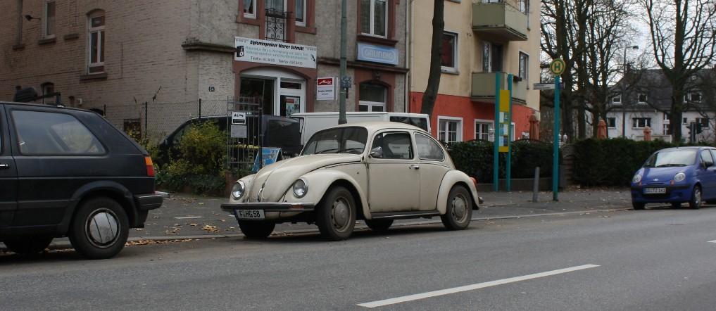 Mittlerweile selten: Der Alltags-Käfer