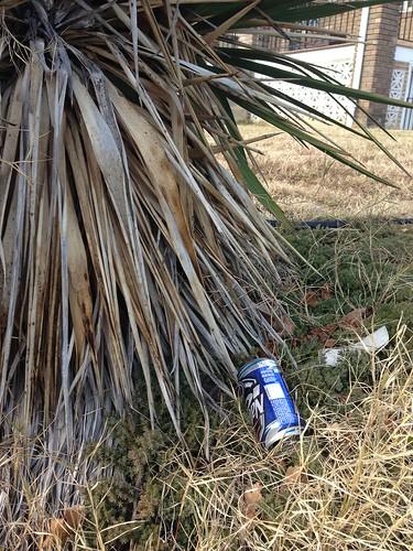 Street booze on Spring
