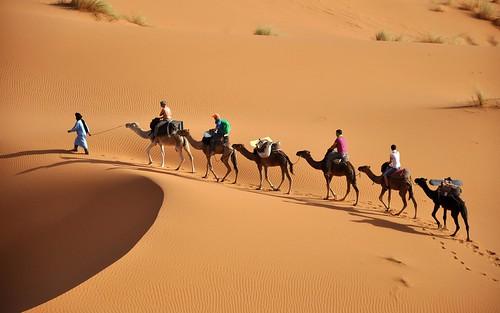 Sahara-1800x2880