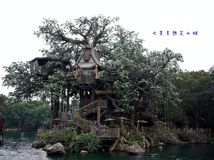 15 泰山得樹屋