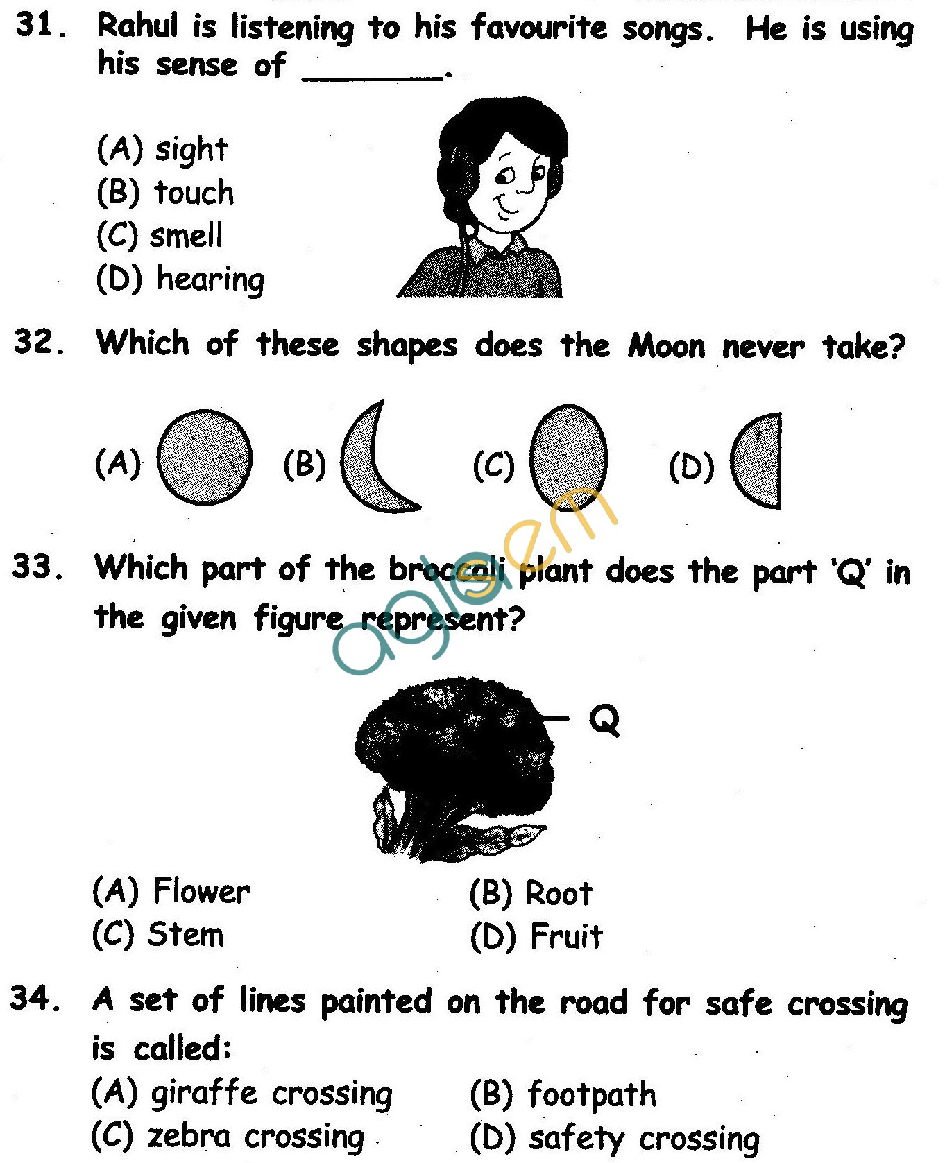 NSTSE 2010 Class II Question Paper with Answers Science