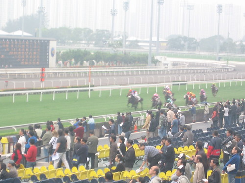 沙田馬場 Sha Tin Racecourse