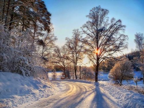 road winter light snow tree nature landscape sweden photomix bessula bestcapturesaoi magicunicornmasterpiece elitegalleryaoi rememberthatmomentlevel4 rememberthatmomentlevel1 rememberthatmomentlevel2 rememberthatmomentlevel3 bestevercompetitiongroup rememberthatmomentlevel5 rememberthatmomentlevel6