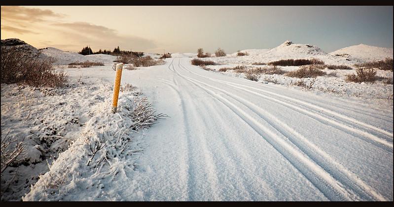 Snow Avenue