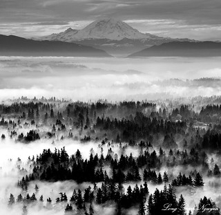 Issaquah plateau, Mount Rainier, Washington