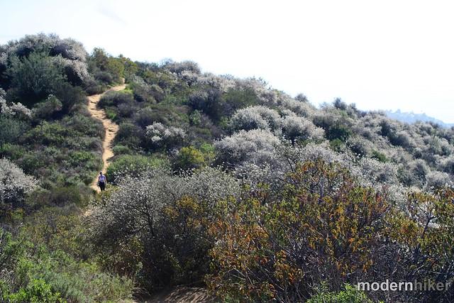 Temescal Canyon to Skull Rock 34