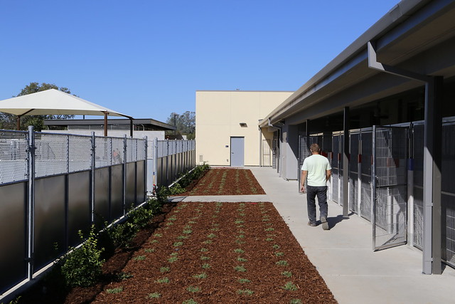 Placer County Animal Services Center