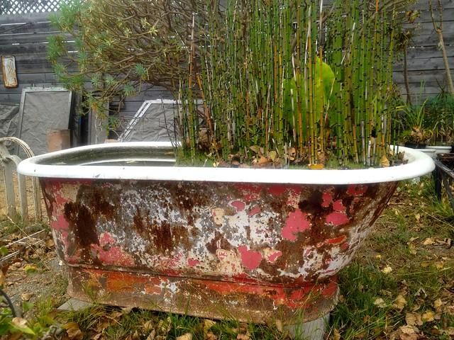 Ohmega Salvage Bathtub And Plants Flickr Photo Sharing