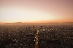 [Free Images] Architecture, City / Town, Sunrise / Sunset, Landscape - Japan, Japan - Tokyo ID:201210240600