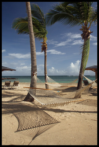 sea beach shadows hammocks caribbean nevis westindies coconutpalms leewardislands lesserantilles nisbetplantationandbeachclub