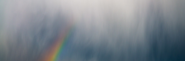 Rainbow (2 of 4)