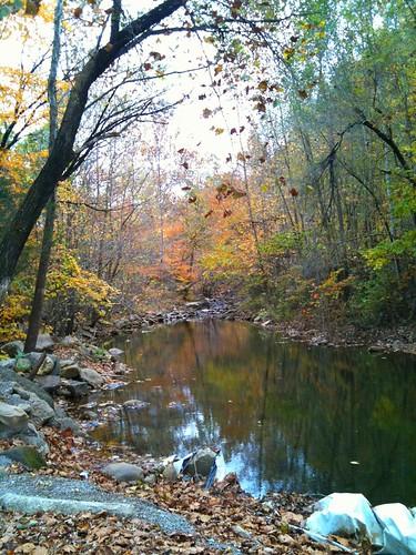 fall water river