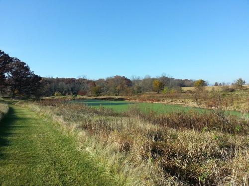 Prairie Oaks Forest Preserve
