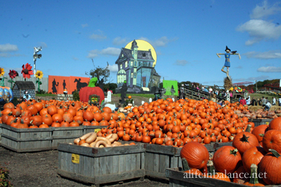 linvilla_orchards_1