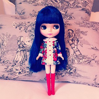 And Kate - planning an autumn photo shoot tomorrow :) #blythe #cancancat