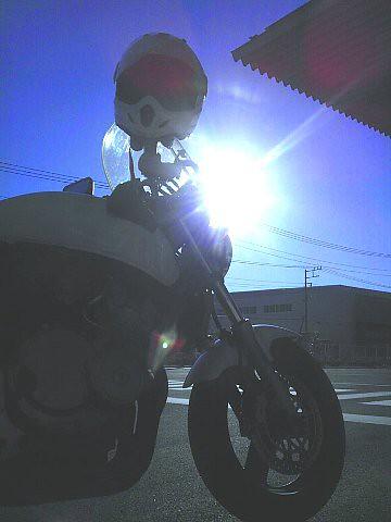 秋の埼玉 バイク便