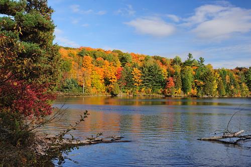 fall automne couleurs parcdelagatineau