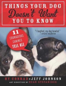 Things Your Dog Doesn't Want You to Know