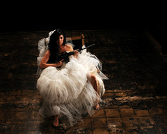 The Bride in the Basement
