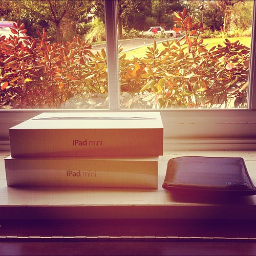 iPad mini x 2